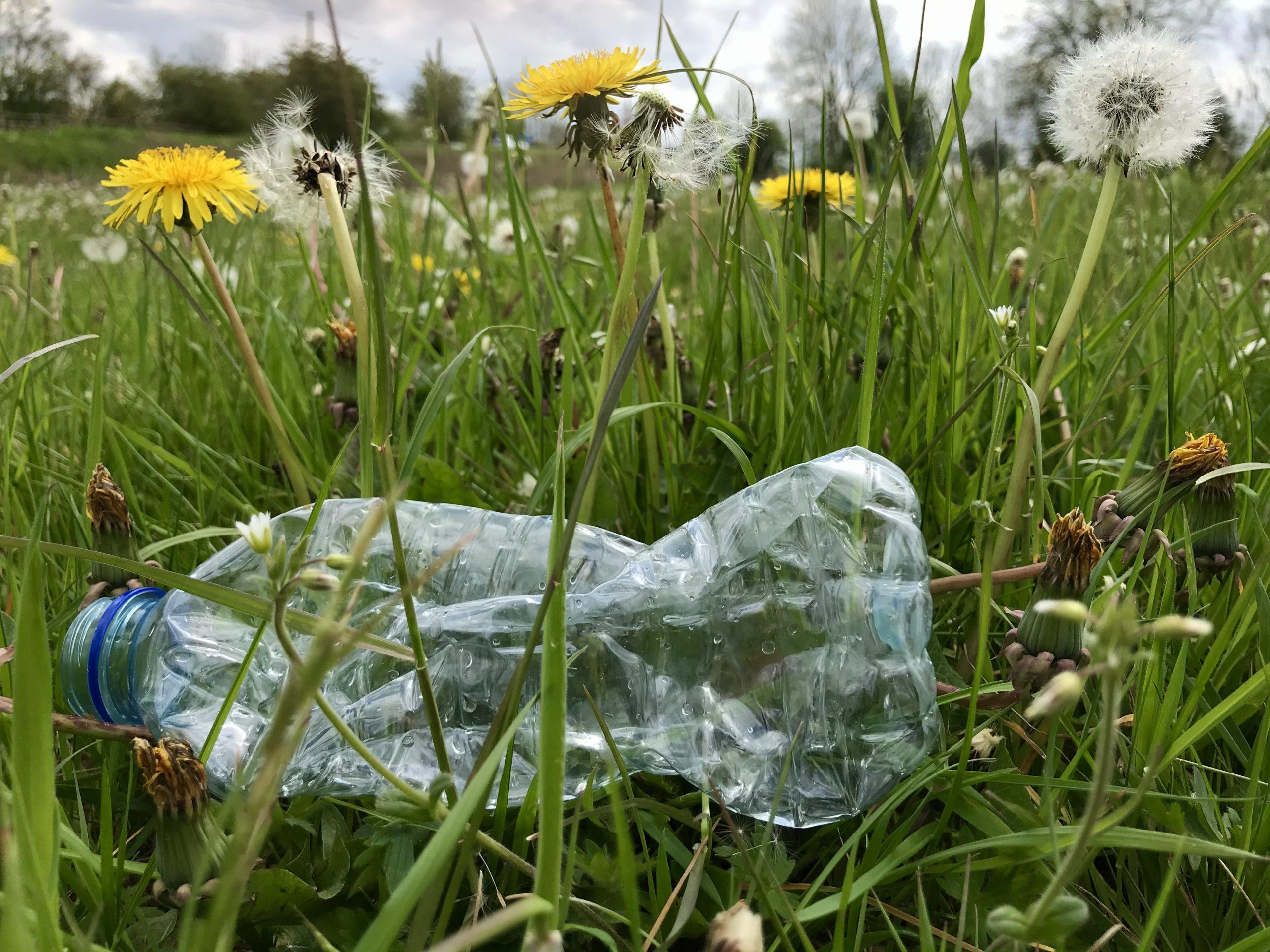 A discarded bottle in a Peak District field
